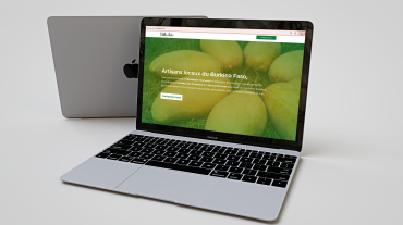Création de site web - Bilbabio